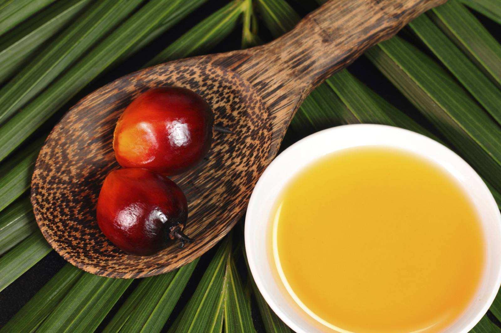 棕榈油期货