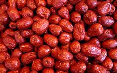 红枣期货行情:红枣期货涨停 期价创新高