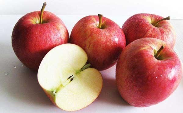 苹果期货行情