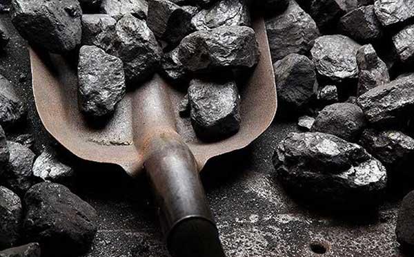 郑煤期货行情