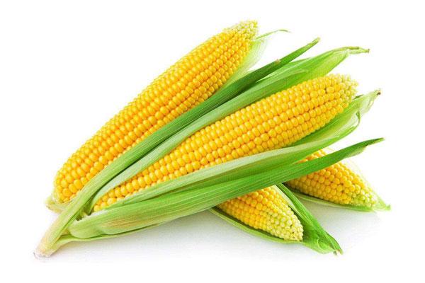 玉米期货行情