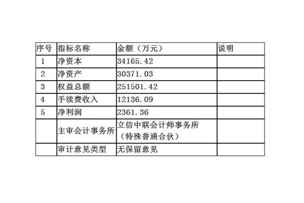 中辉期货2018年财务报表
