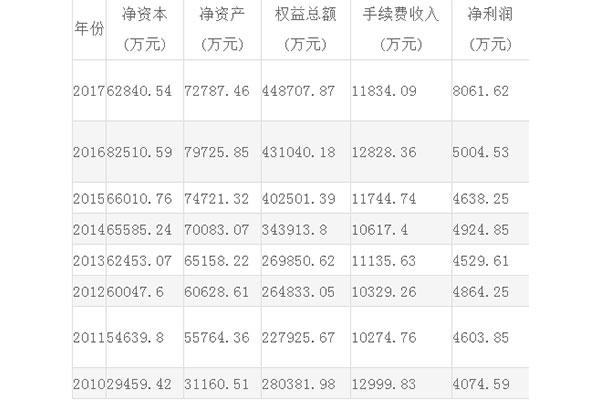新湖期货公司财务信息报表