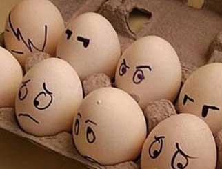 今日鸡蛋期货价格,鸡蛋期货走势分析