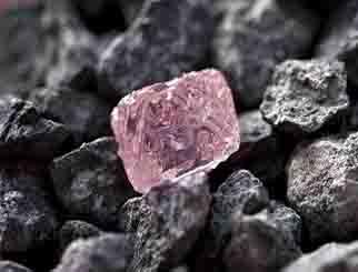 铁矿石期货行情:国际化满周岁吸引境外客户