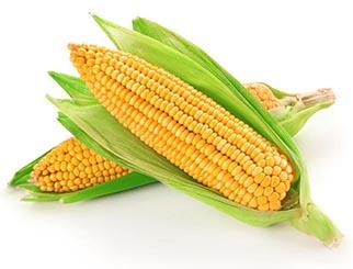 玉米期货行情受多方因素影响