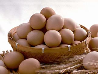 怎样计算鸡蛋期货手续费 做一手鸡蛋需要多少钱