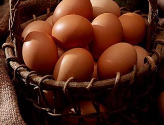 大起大落 鸡蛋期货再现过山车行情 后市支撑可在