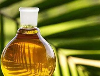棕榈期货开户应该怎么做 棕榈油期货开盘时间