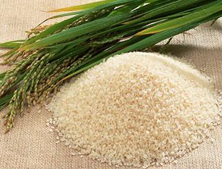 粳米进入去库存阶段 中长期其价格或将下移