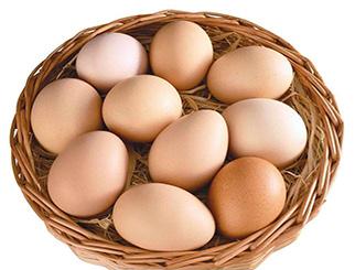 近期鸡蛋走强 趋势或将维持一段时间