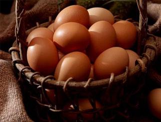 农副产品期货有哪些品种 农副产品期货如何做