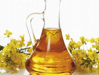 菜油期货是郑油吗 期货菜油手续费大概是多少