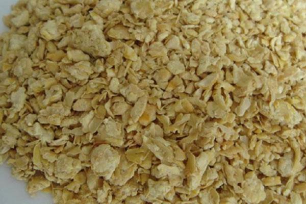 豆粕期货在哪个交易所 期货豆粕基本面分析哪几个方面