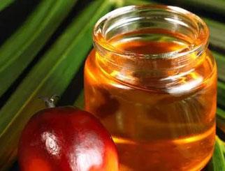 棕榈油是什么油 棕榈期货和什么有关