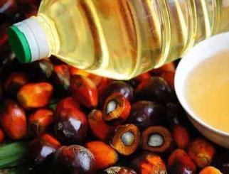 供应缩减 需求下滑 棕榈油后市可能依然偏弱