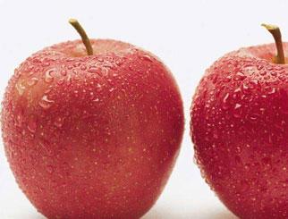 苹果期货手续费怎么算的 期货苹果一手多少钱